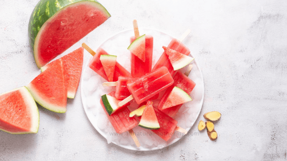 Pregnancy Nausea Popsicles - Watermelon + Ginger
