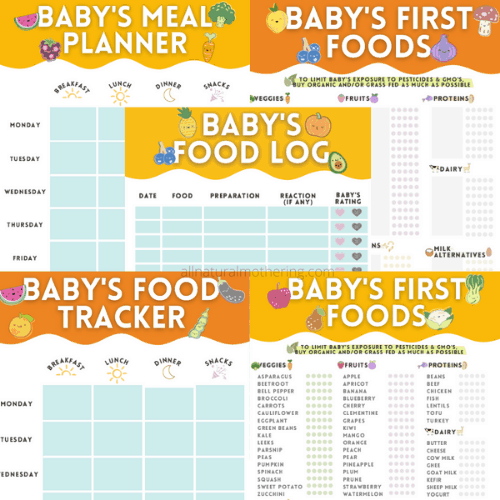 baby food planner and tracker for babyled weaning