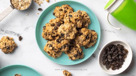 Easy Toddler Oatmeal Raisins Cookies
