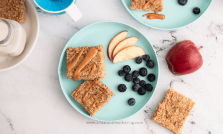 Healthy BLW Apple Oat Bars For Babies and Toddlers